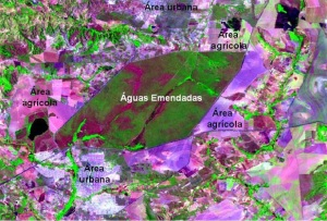 Recorte de imagem do satélite Landsat demonstrando os efeitos da interferência humana no entorno da Estação Ecológica de Águas Emendadas.