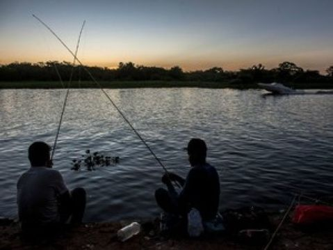 pesca em mt