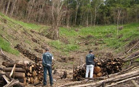 Desmatamento_bahia
